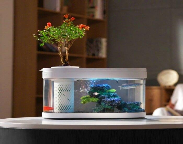 Bể cá mini Xiaomi đáng mua nhất hiện nay